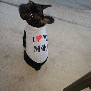 Small dog t-shirts.